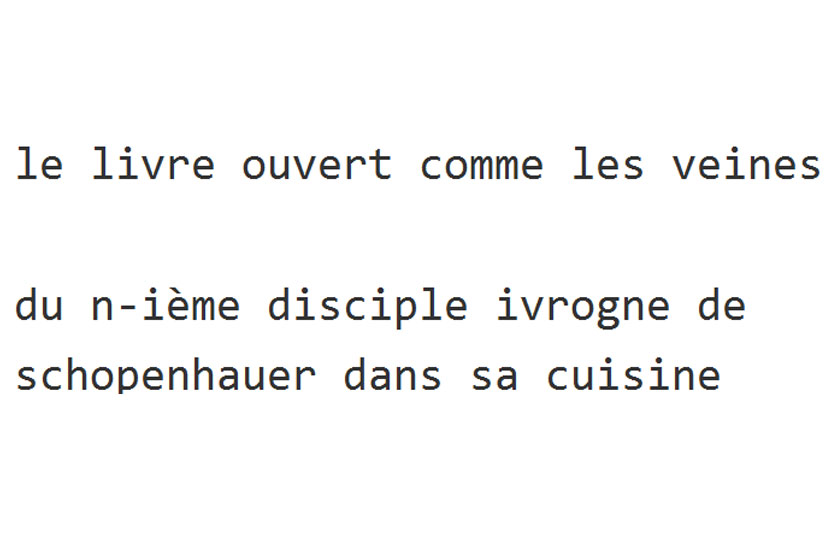 «La chopine de Schopenhauer» – Cédric Demangeot