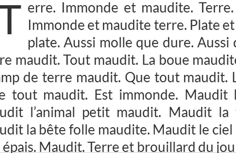 «Terre» – Amandine André