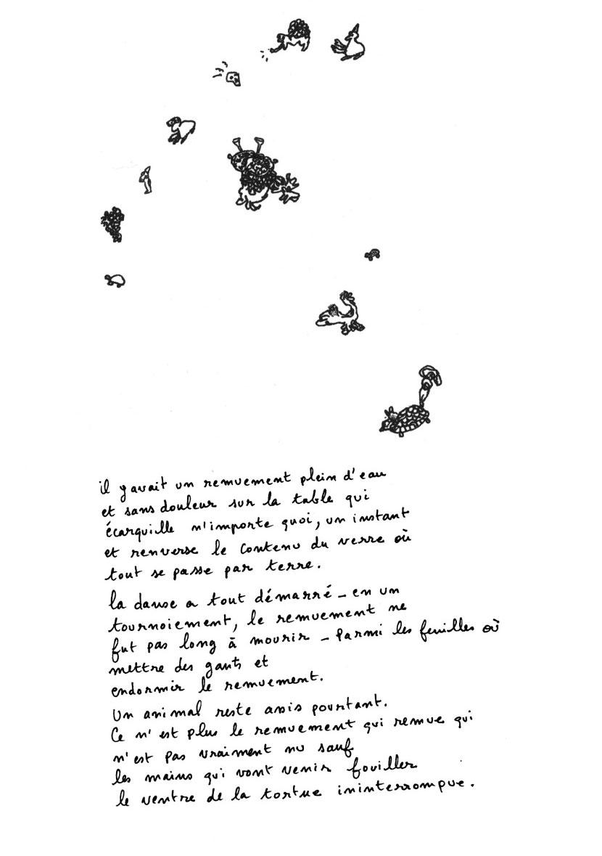 Tortue ininterrompue - Eléonore Lebidois